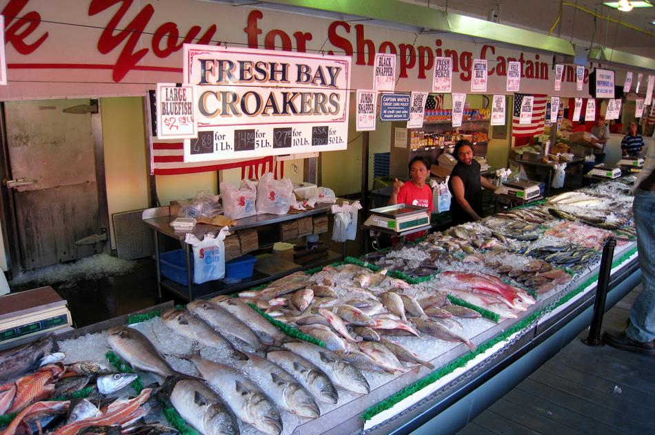 Blog bethany king photography for Washington fish market