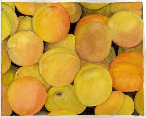 apricots large