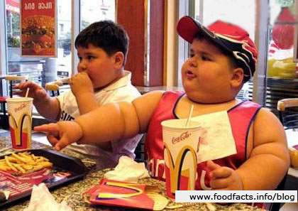 Mcdonald large kid 750701