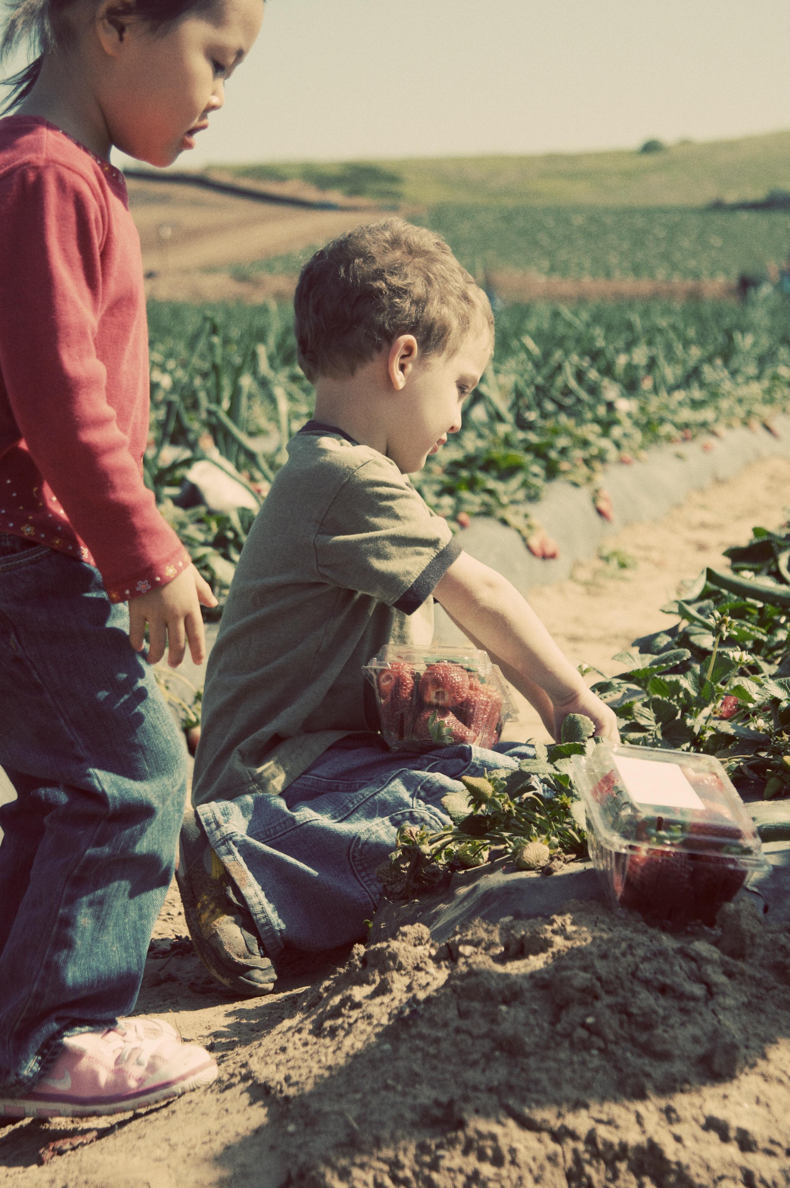farm-364