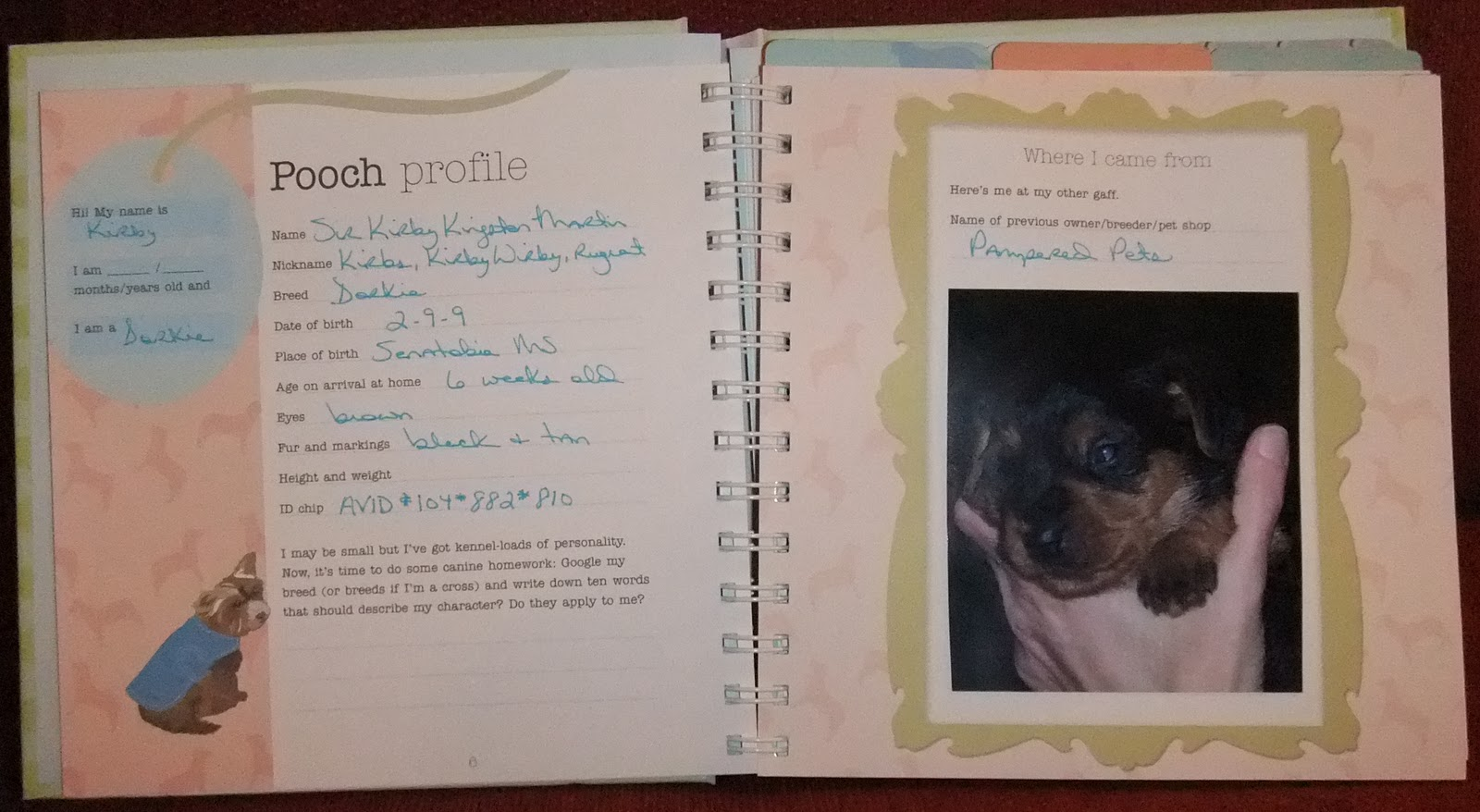 kirby s puppy book the canine chef cookbook
