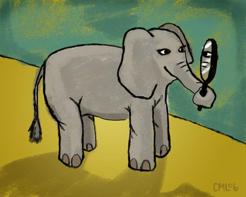 Mirror Test Implies Elephants Self Aware Sketchbook