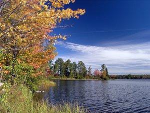 Twin Lakes area