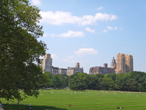 Another Beautiful Shot in Central Park