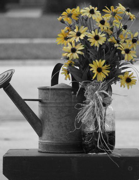 flowercanylw.jpg