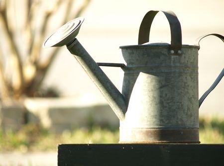 wateringcan1.jpg