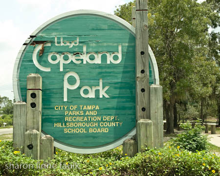 061109 copelandpark-4