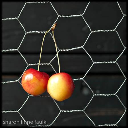 072609 cherries