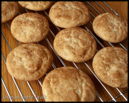072909 cookies