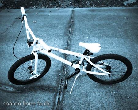 wpid2808-092209-bike.jpg