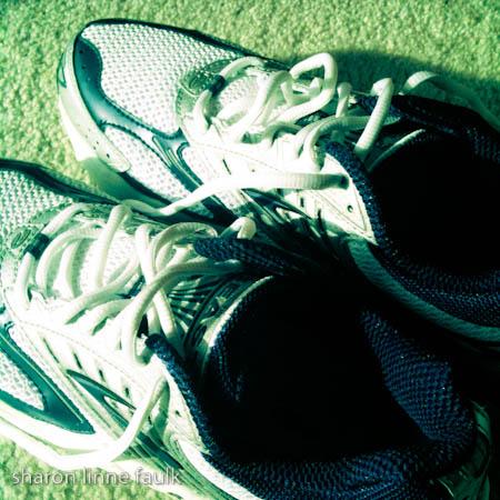 wpid3232-110409-shoes.jpg