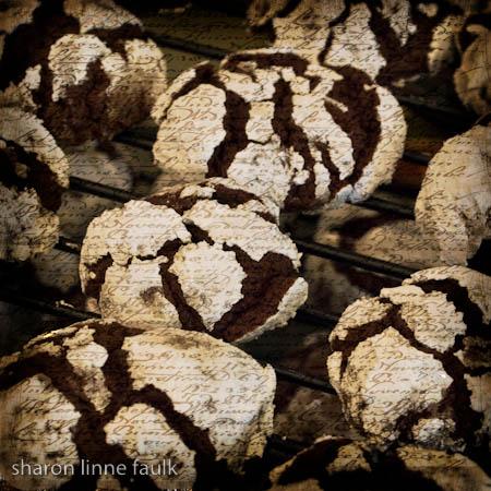 wpid3564-chocolate-crinkles.jpg
