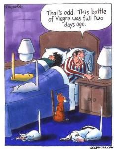 viagra_toon