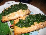 salmon_mojo1.jpg