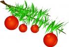 christmas-branch.jpg