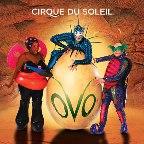 cirque-du-soleil-ovo.jpg