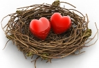 nest-hearts.jpg