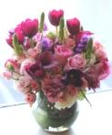 violet-flowers.JPG