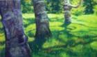 arnold-arboretum.jpg