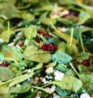 spinach-salad-thumb.JPG