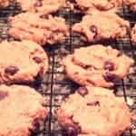 gluten-free-peanut-butter-cookies-thumb.jpg
