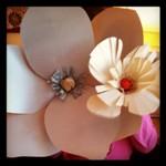 laurel-flowers.jpg