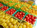 Red and yellow maters