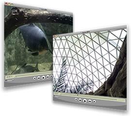 Zoo Videos