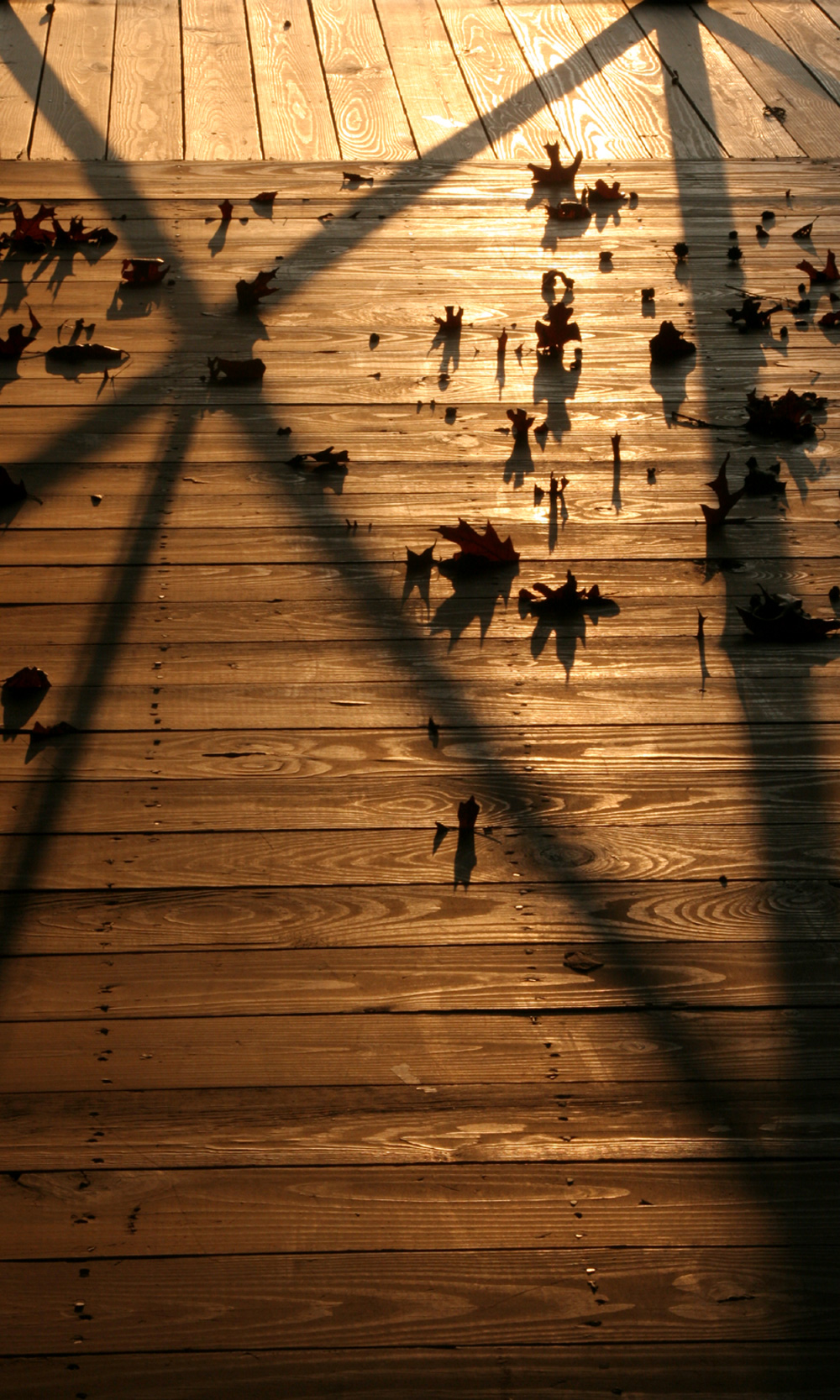 leaves-on-porch-small.jpg
