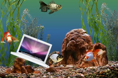MacBook Scuba-1.jpg