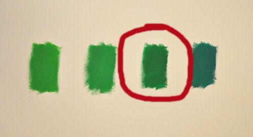 chlorophyll1.jpg