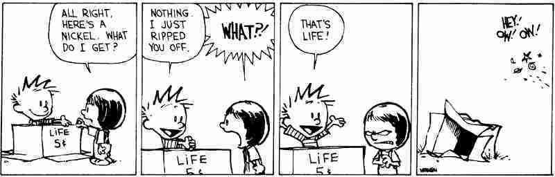 calvin-life-lesson