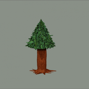 First Tree