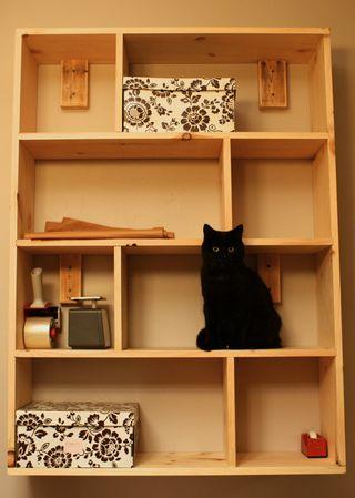 Shelves dining
