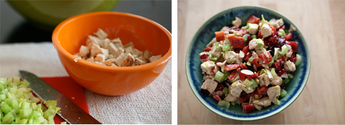 chicken-salad-gallery