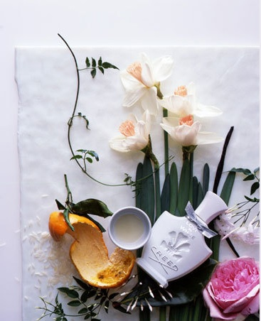 cindy-diprima-prop-styling-perfume-photography