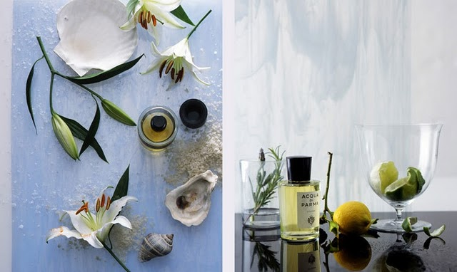 cindy-diprima-prop-styling-perfume-photography-kana-okada-flowers