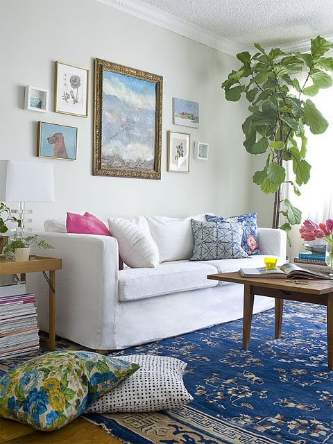 fiddle-leaf-fig-white-couch-blue-rug-bright