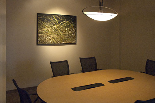 The custom printed and lit art adds a breath of freash air to windowless room.