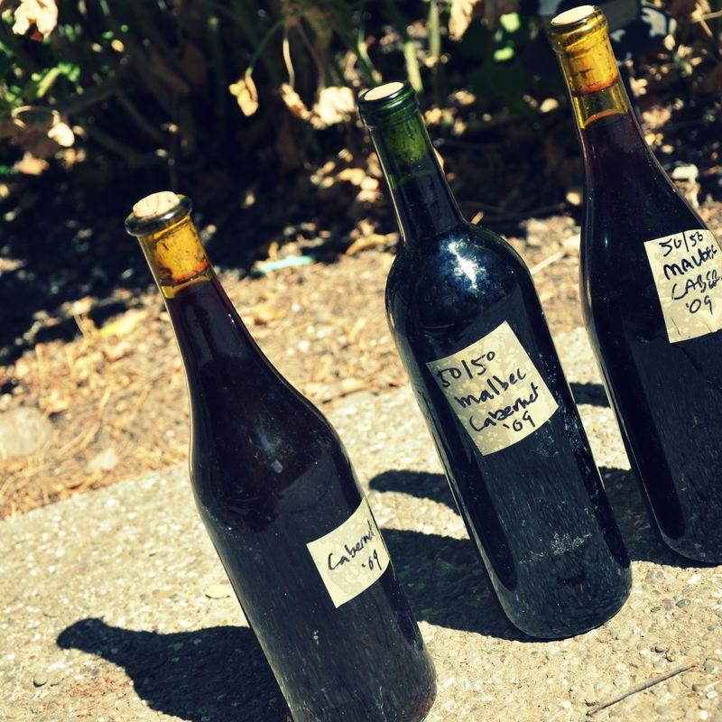 Wine19