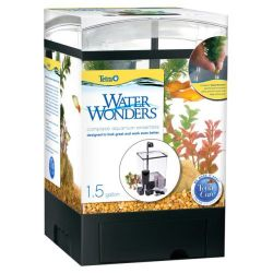 Water Wonders Mini Aquarium For Desk Great Starter Fish