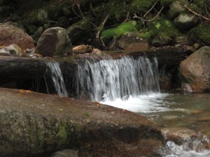 Small Waterfall on the Falling Waters Trail