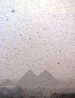 Locusts over the Pyramids
