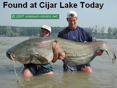 Amazing New Discovery at Cijar Lake!