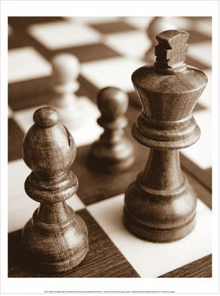 chess 09jul09.JPG