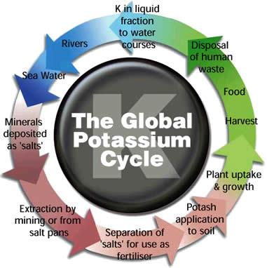 Potash Cycle 10 June 2011.JPG
