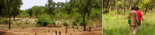 Uranium Project in Mali