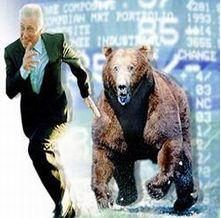 Bear Market 10 July 2009.JPG