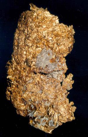 Gold 20 August 2010.JPG